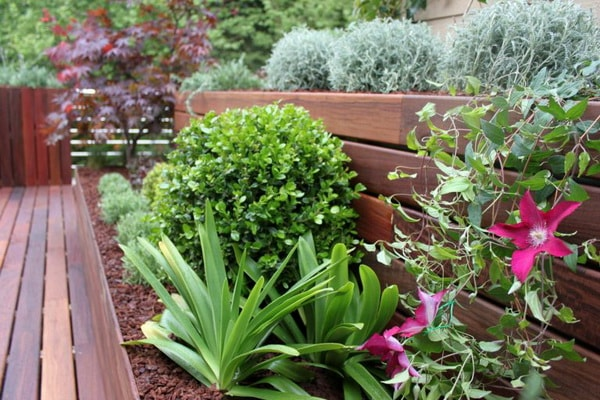 Wood and many plants for terraces