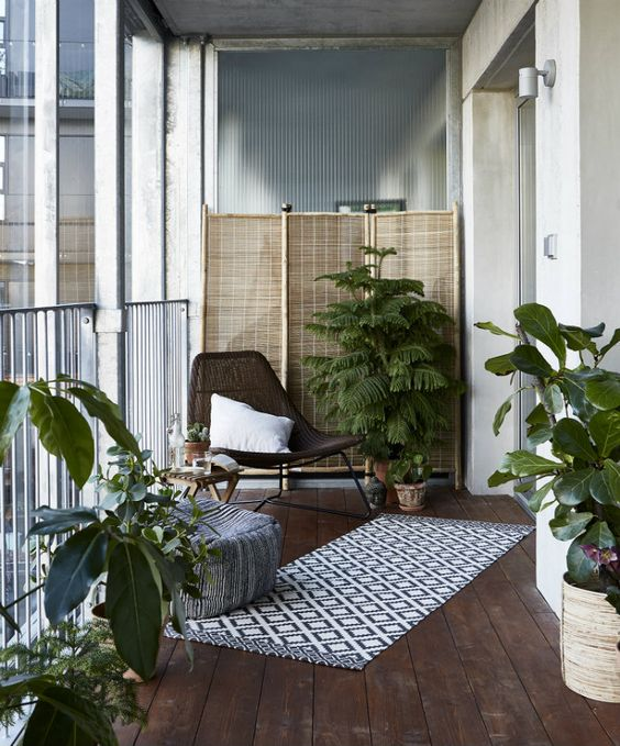 Decoration of small balconies with plants