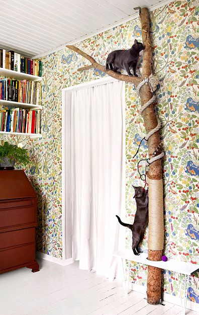 pet interior design VIII