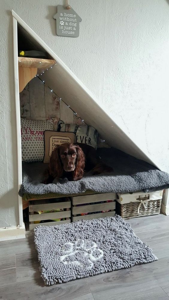 interior design for pets V
