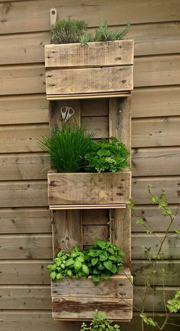 Vertical garden made with wooden planks
