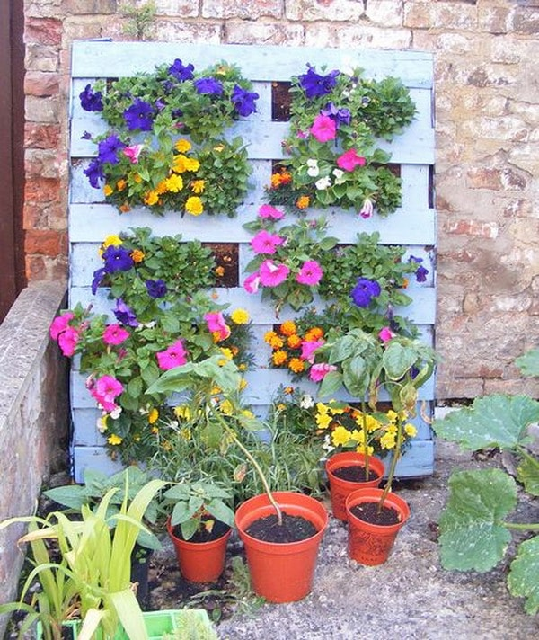 Flowers on wooden pallets