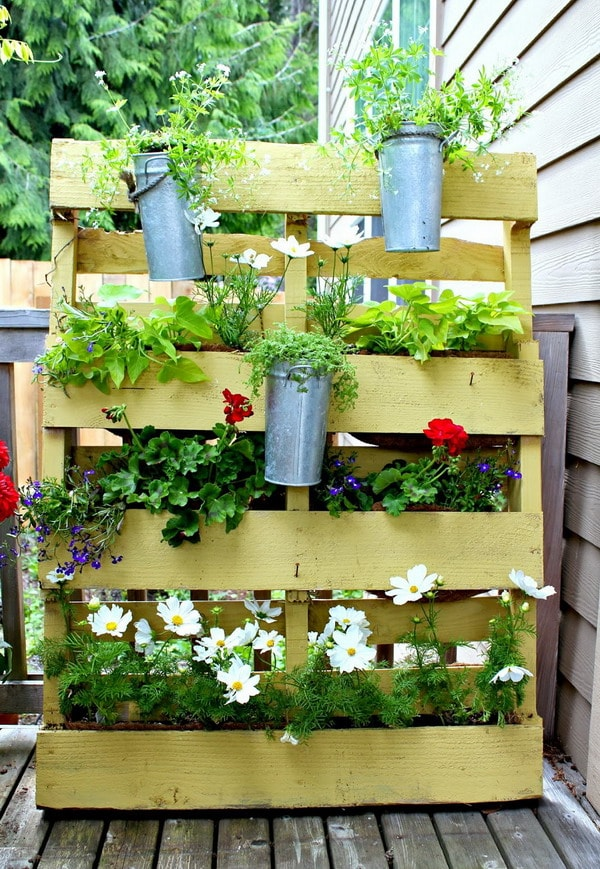 Vertical garden made with wooden platform