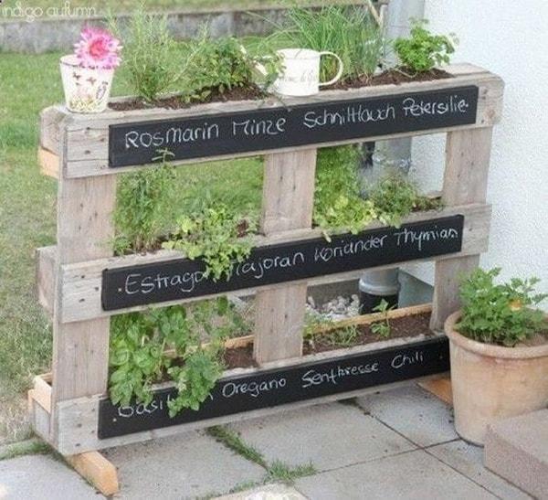 Vertical garden of aromatic plants