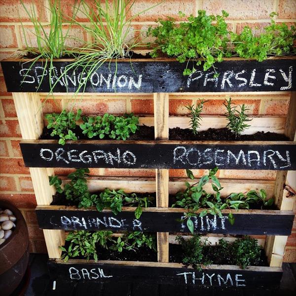 Vertical garden with edible plants