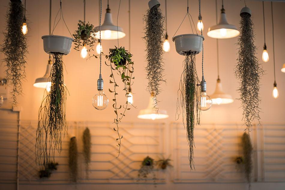 sustainable lighting