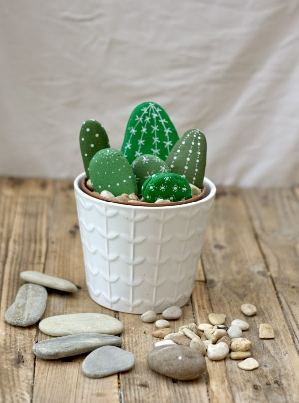 Cactus with painted stones