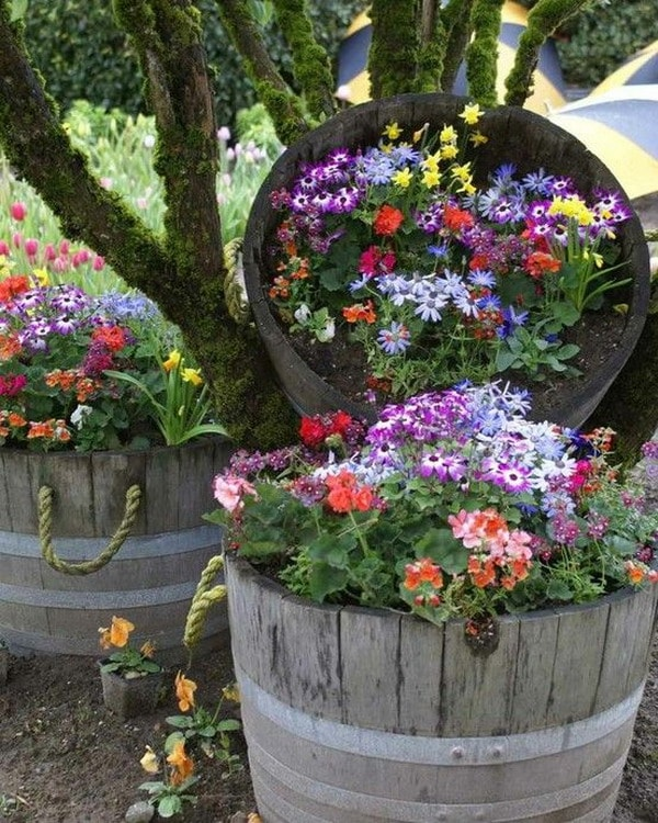 Flowers in recycled barrels