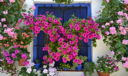 Decoration of balconies