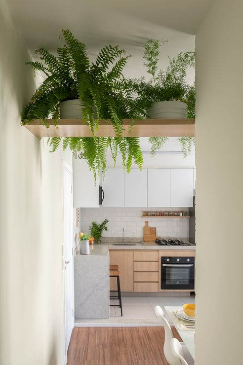 open kitchen decorated with plants and wooden cabinets