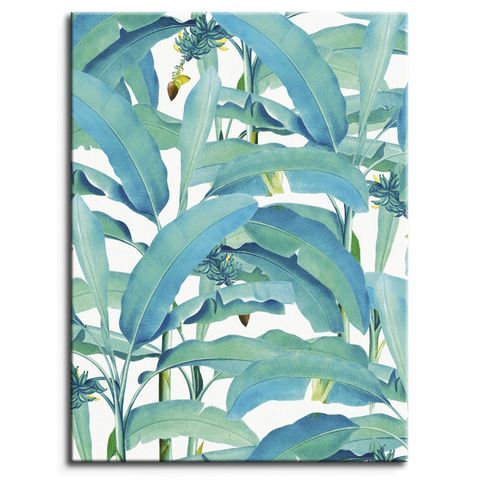 banana forest canvas print by posterlounge