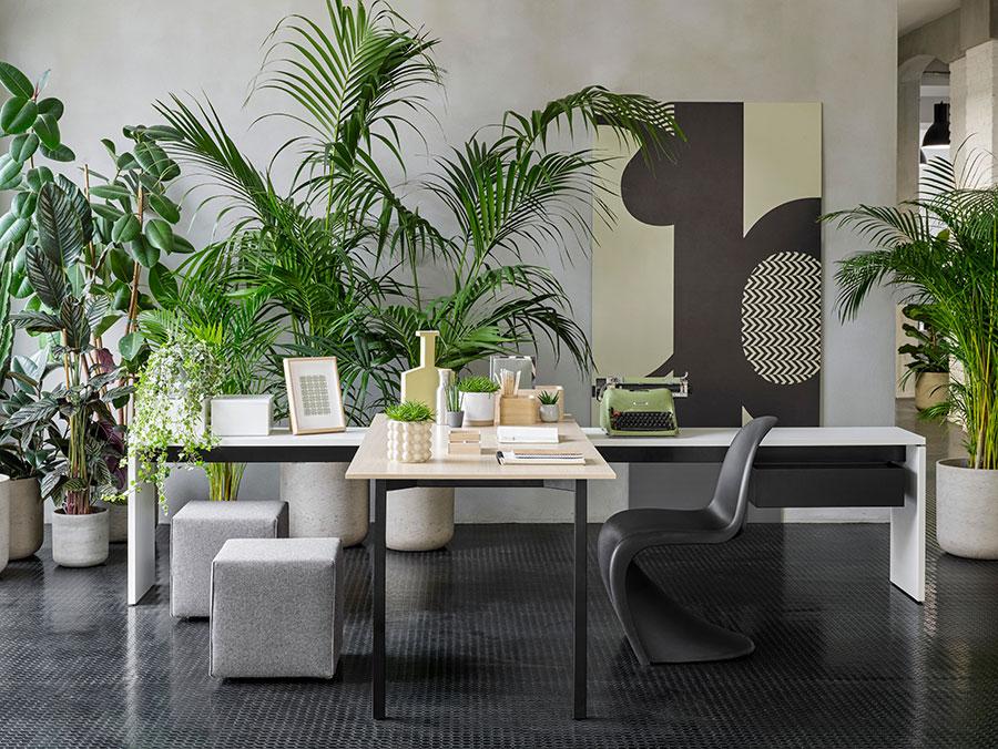 Ideas for furnishing a modern office n.02