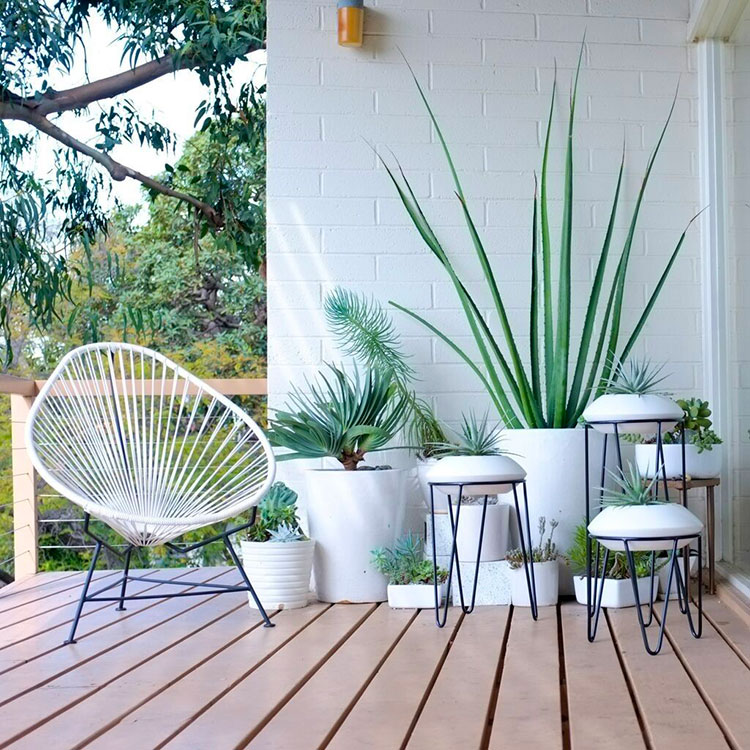 Ideas for decorating a balcony with plants n.04