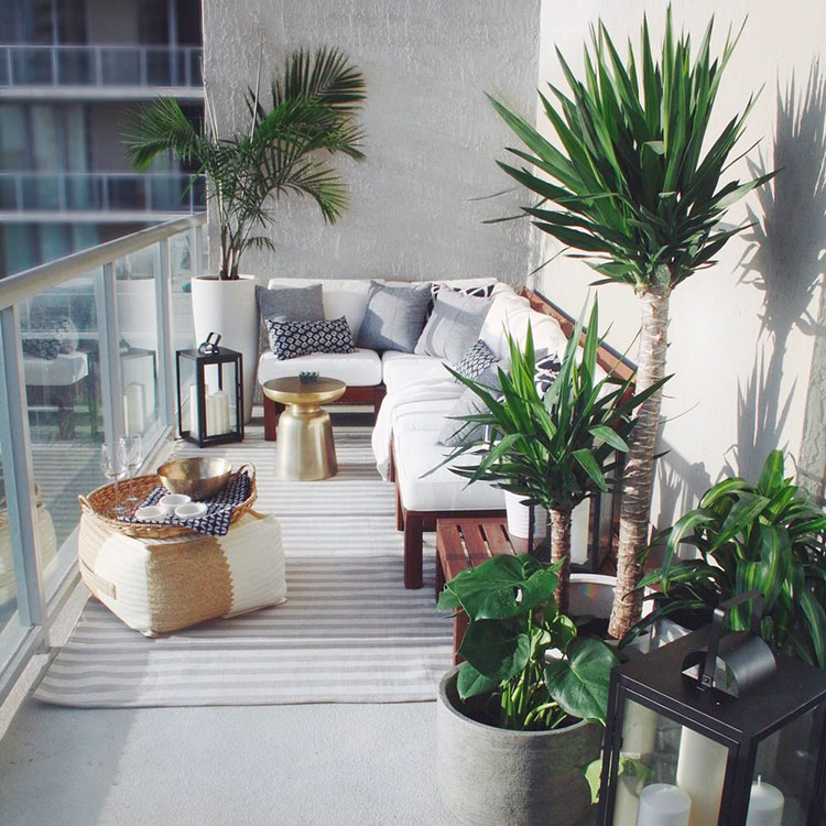 Ideas for decorating a balcony with plants n.05