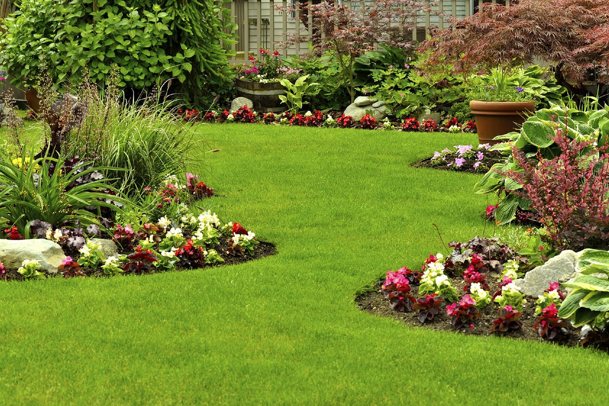 How to place plants in the garden 3