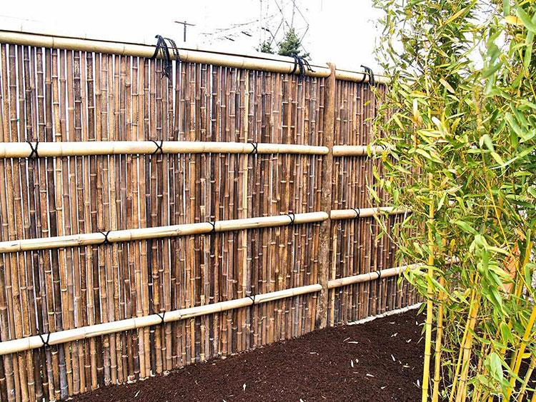 Design Bamboo Fence # 03