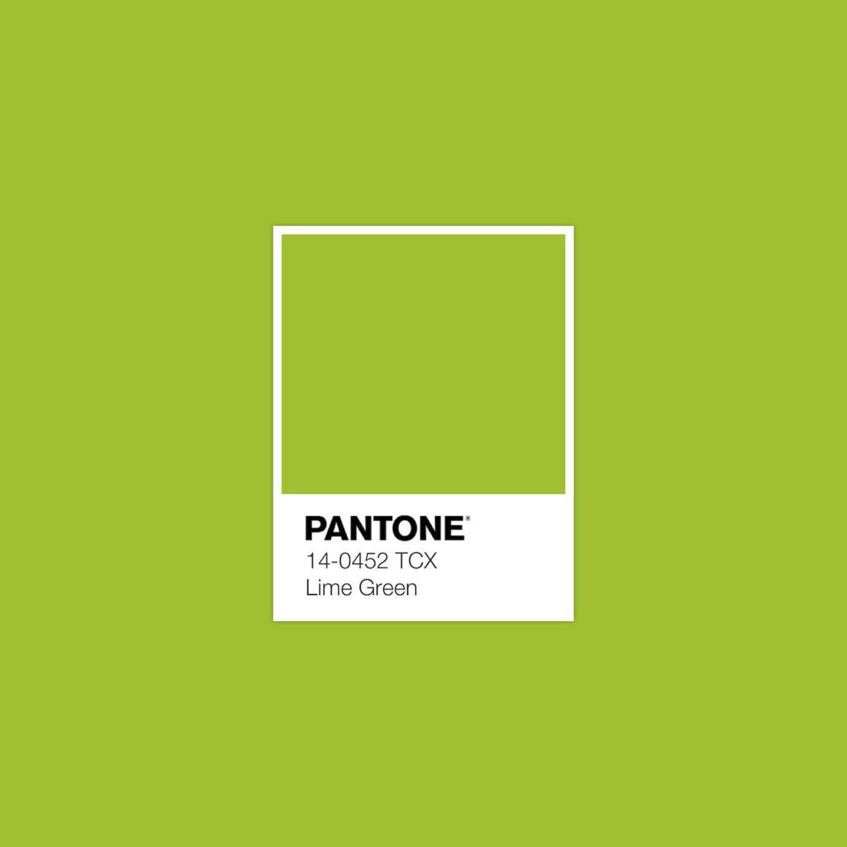 living room-walls-lime-green-5