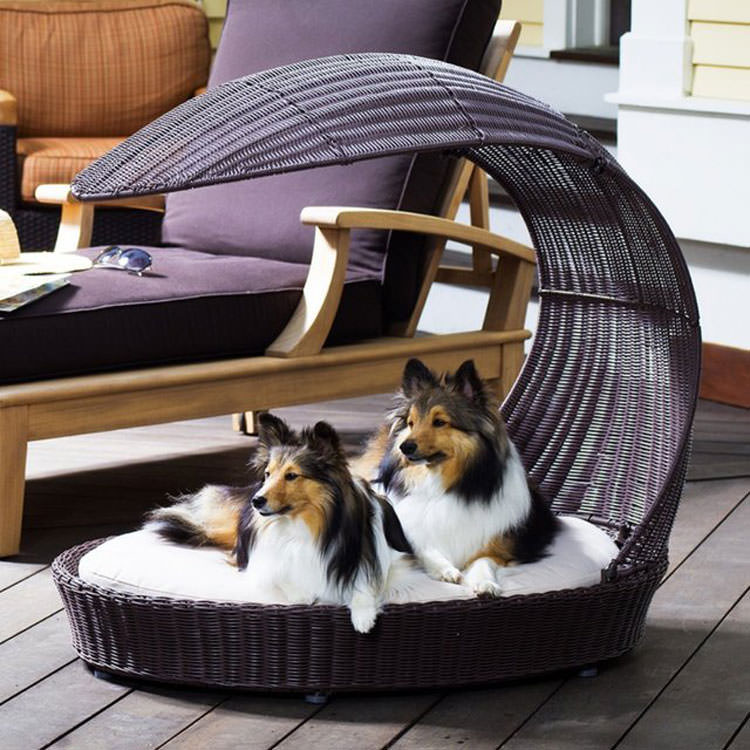 Garden bed for dogs with a modern design