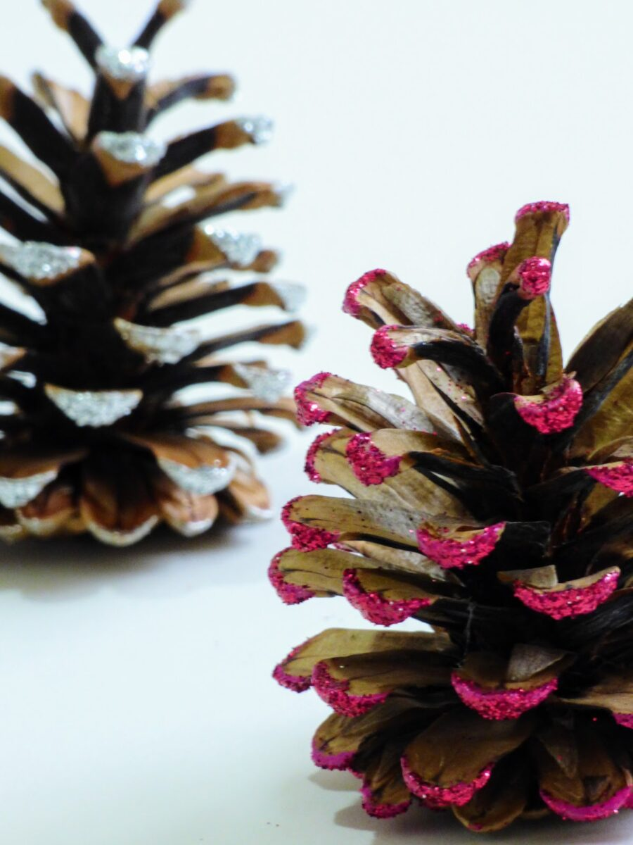 diy-christmas-decorations-with-pine-cones-8