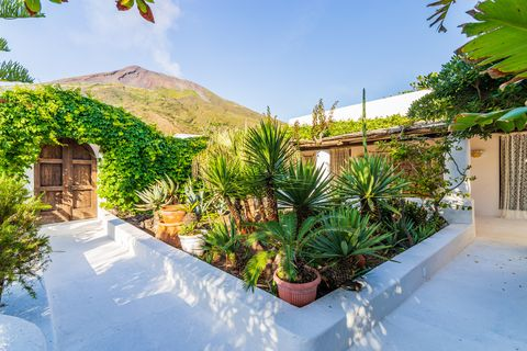 garden in the house of dolce gabanna