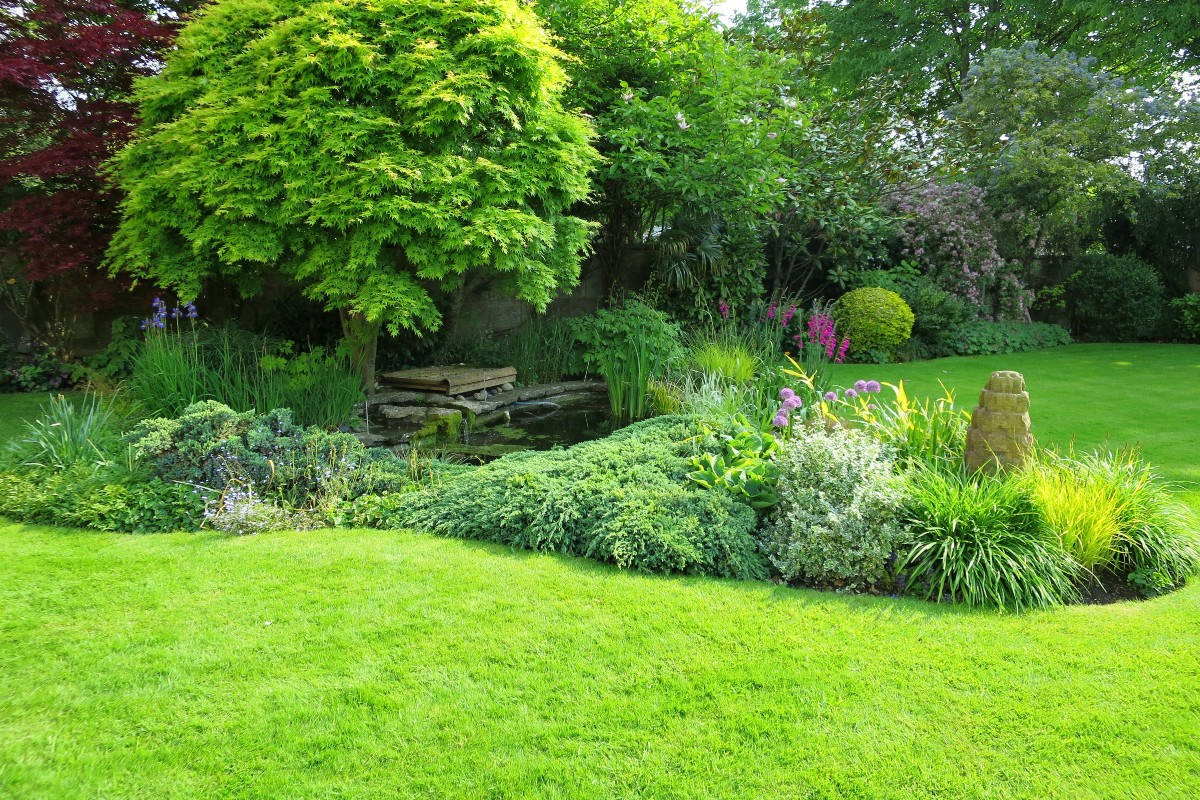 Lawn how and when to sow 2