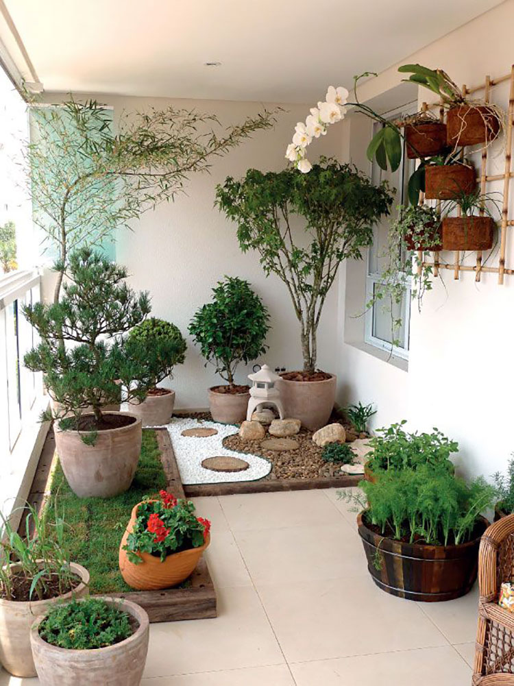 Ideas for embellishing a terrace with plants and flowers n.7