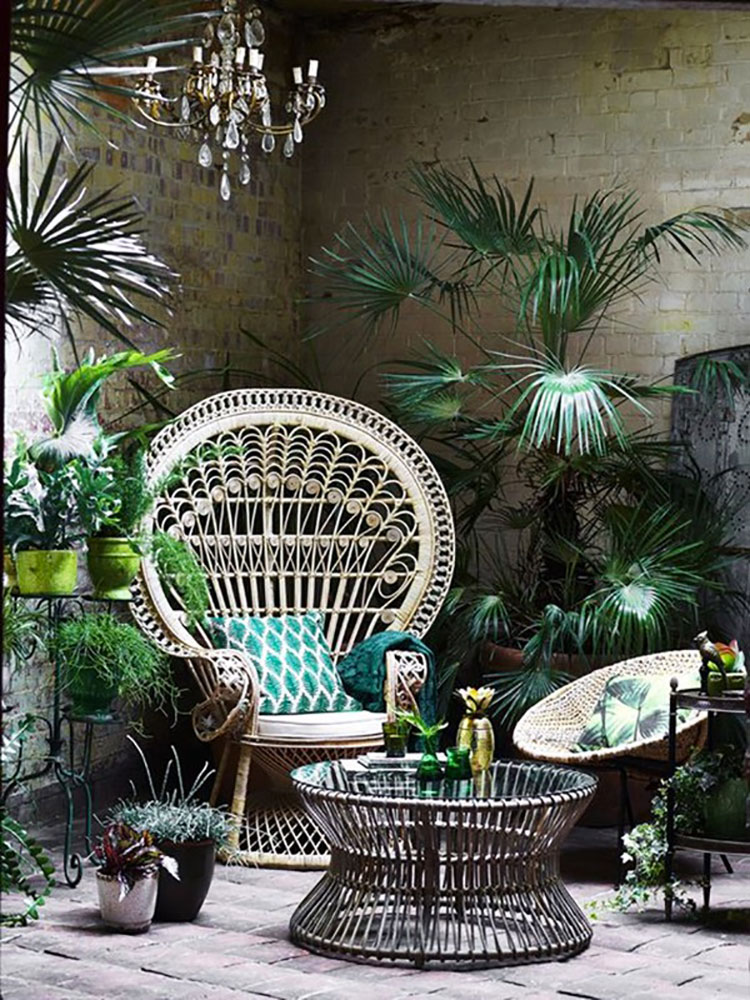 Ideas for embellishing a terrace with plants and flowers n.2
