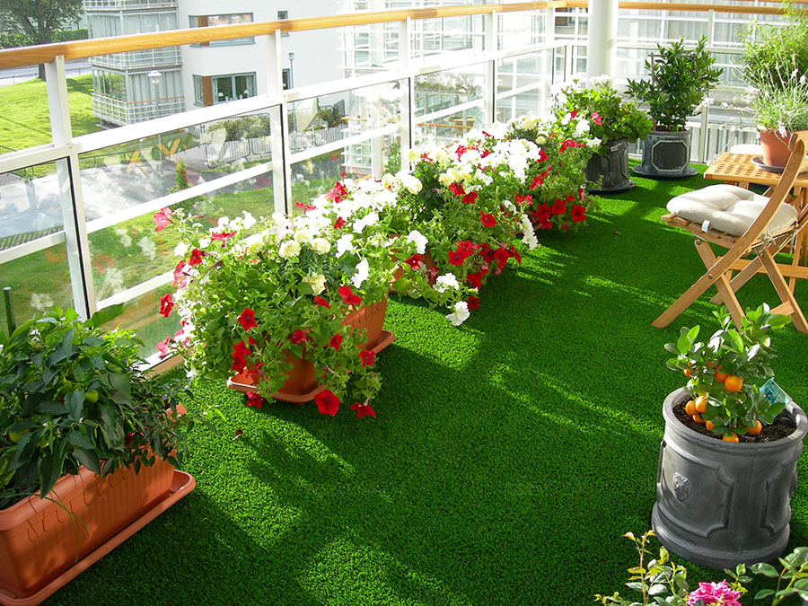 Ideas for embellishing a terrace with plants and flowers n.4