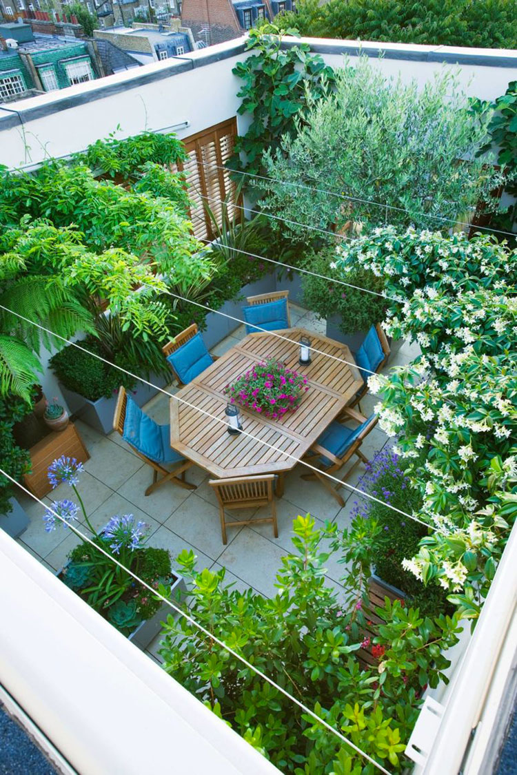 Ideas for embellishing a terrace with plants and flowers n.1