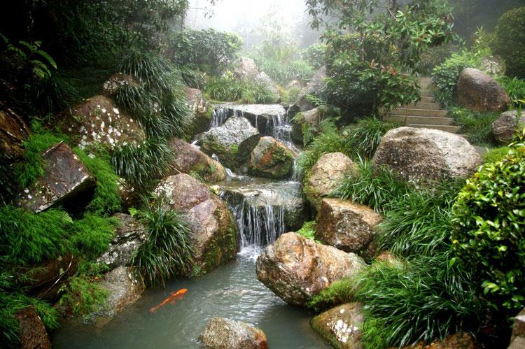 Japanese style zen garden photo # 03