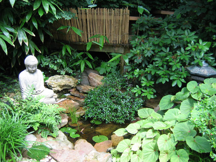 Japanese style zen garden photo # 13
