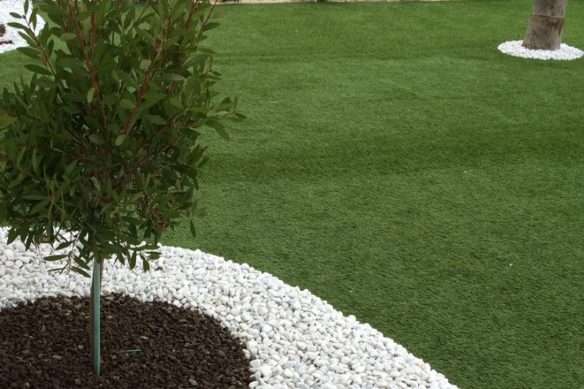 Ornamental lawn_ types, how and when to sow 1