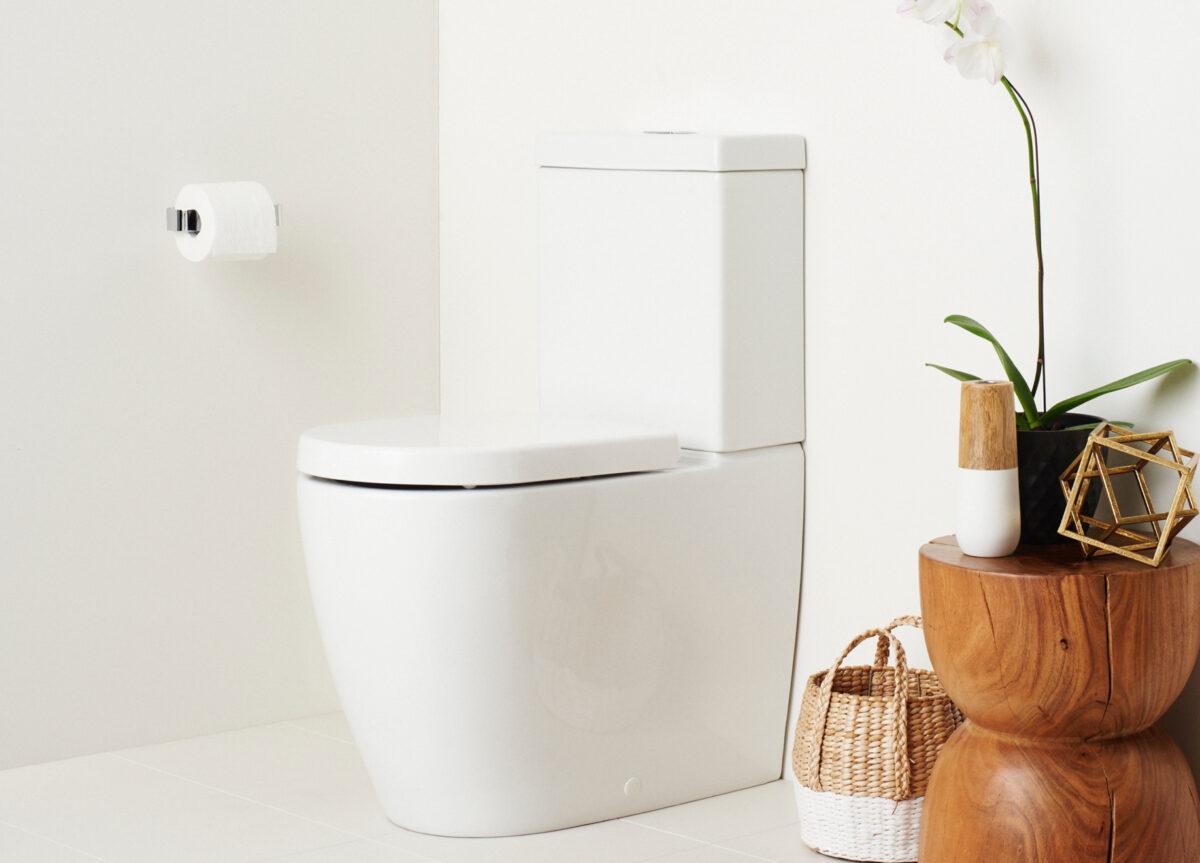 toilet-without-rim-2