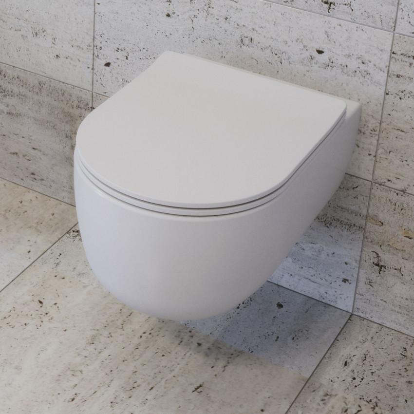 toilet-without-rim-1