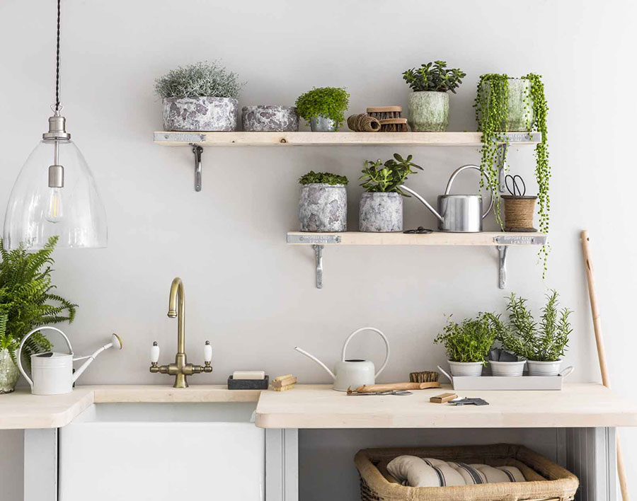 Ideas for decorating the kitchen with plants n.02