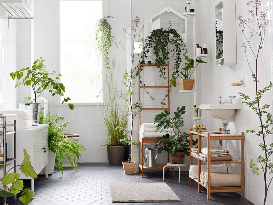 Ideas for decorating the bathroom with plants n.01