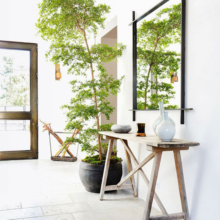 Ideas for decorating the entrance with plants n.04