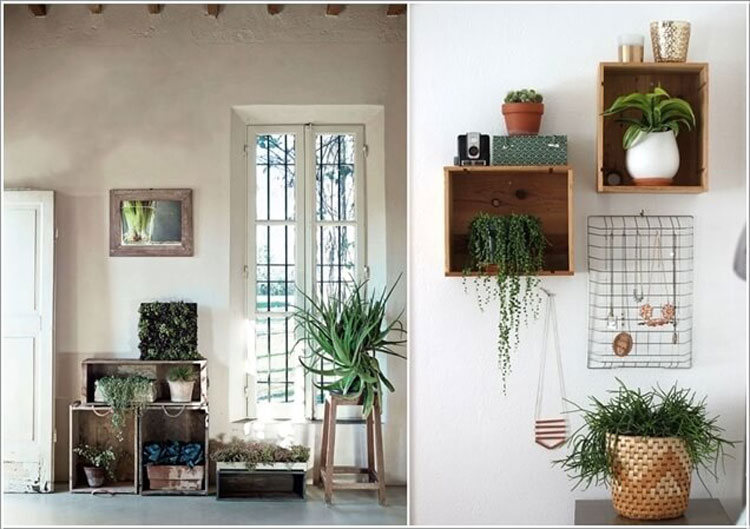 Old wooden boxes to hold plants on the walls