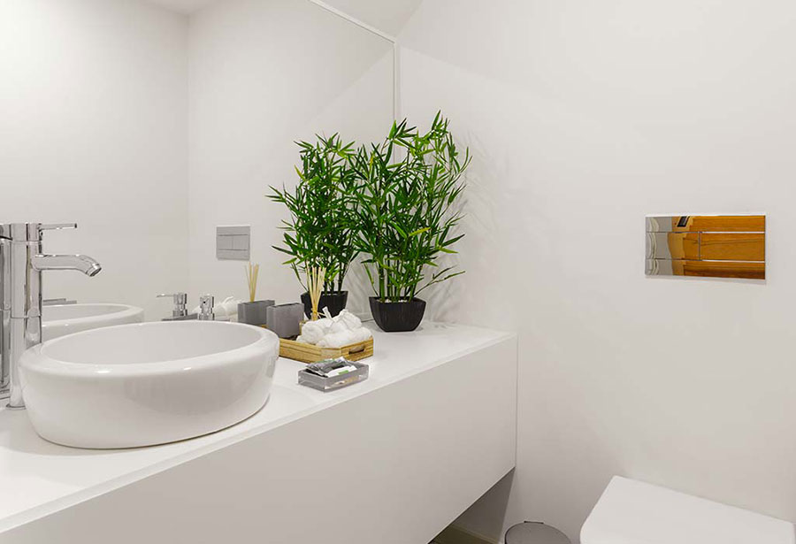 Ideas for decorating the bathroom with plants n.04