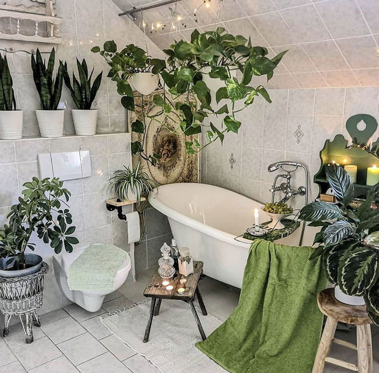 Ideas for decorating the bathroom with plants n.06