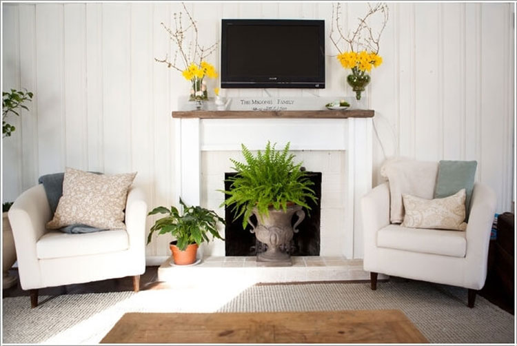 Embellish the fireplace with plants