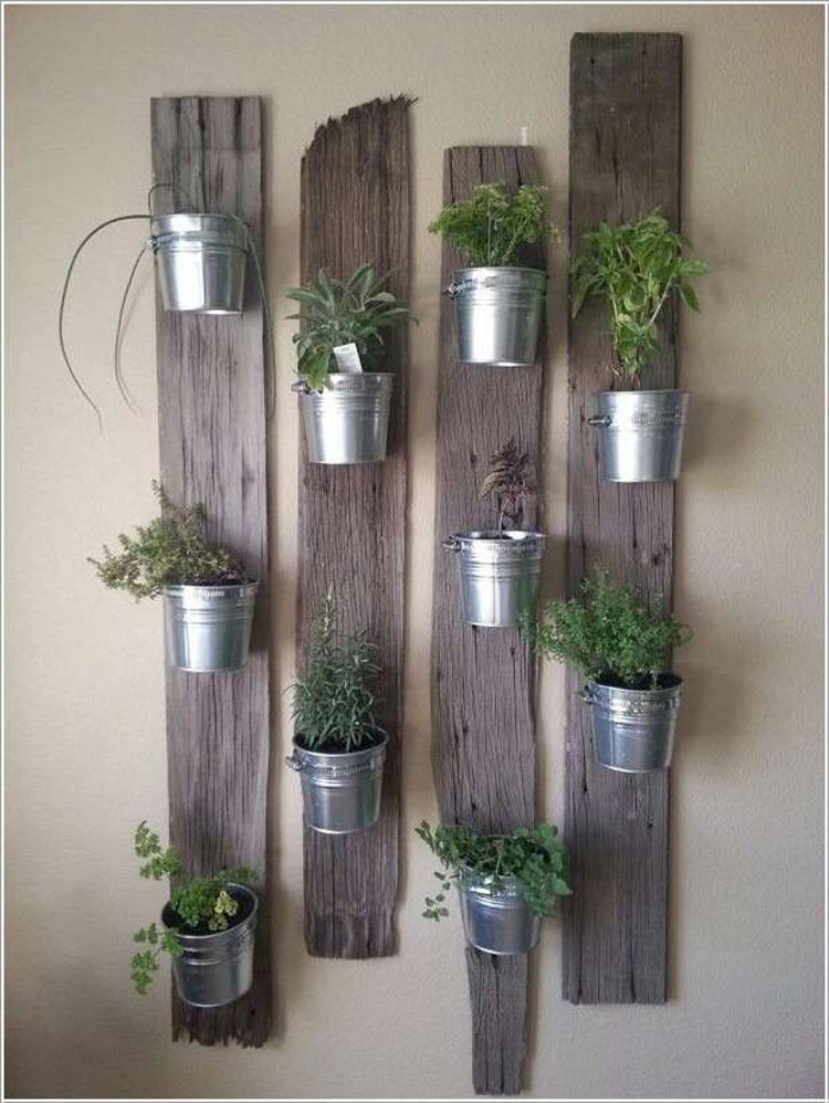 Seedlings fixed to recycled wooden boards