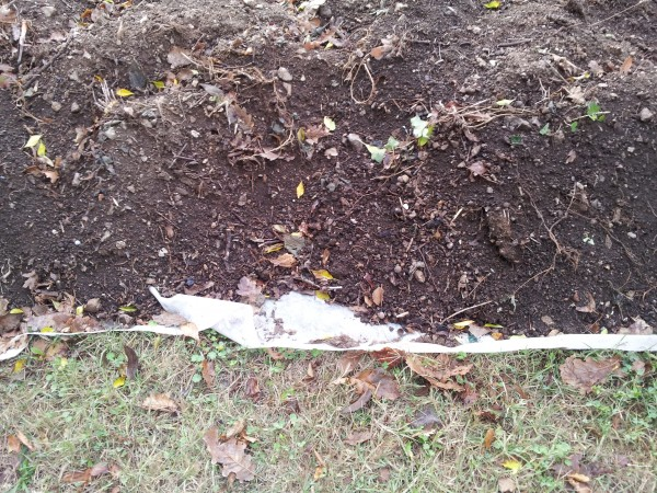 soil-sowing