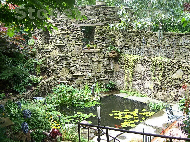 Photo of the garden pond 08
