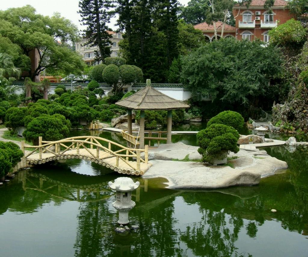 Photo of the garden pond n.12