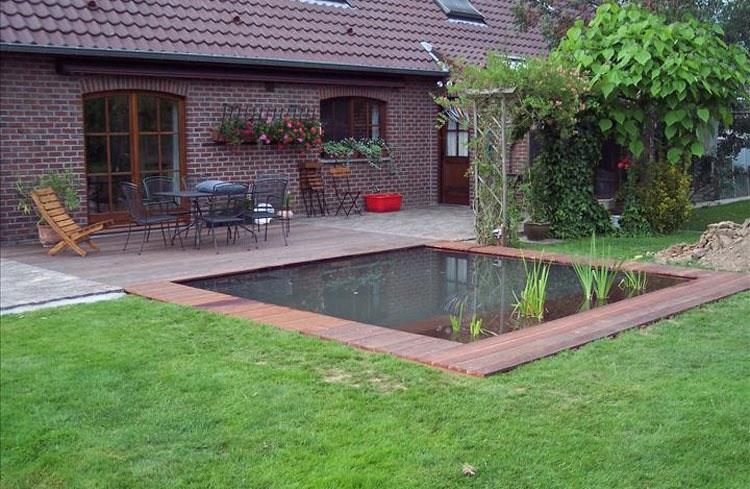 Photo of the garden pond 35