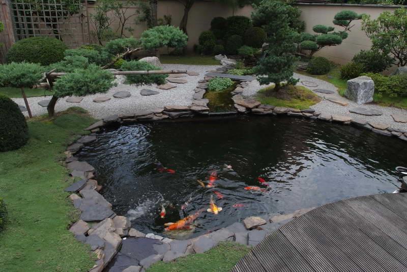 Garden pond photo # 25