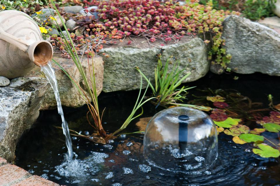 Photo of the garden pond n.30