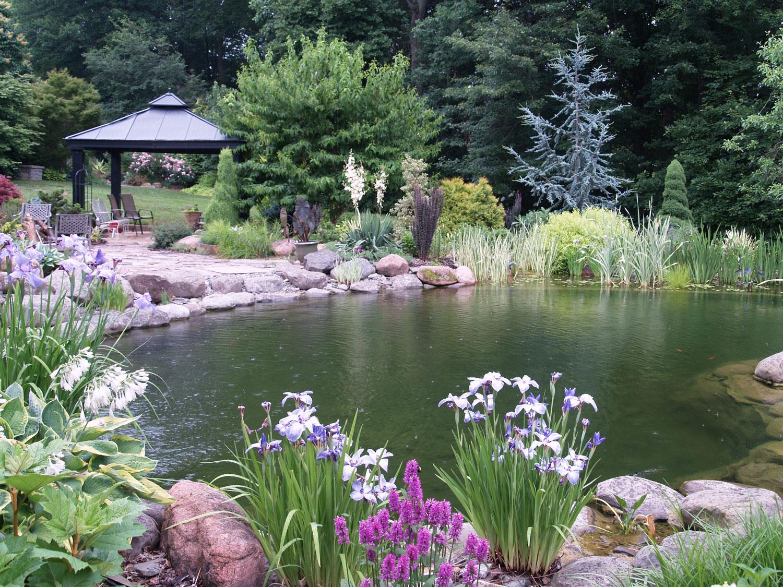 Photo of the garden pond 36