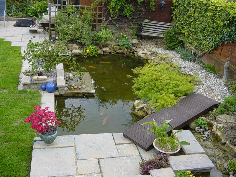 Photo of the garden pond n.40